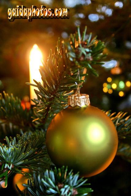 Weihnachtsbilder weihnachtsbaum deko - Weihnachtskarten drucken gratis ...